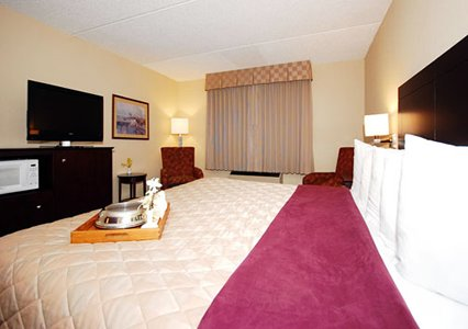 Clarion Hotel Milwaukee Airport King Bed